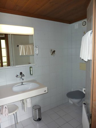 Hotel Gletschergarten: Gletschergarten room 21 bathroom