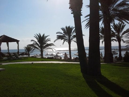 Constantinou Bros Pioneer Beach Hotel: View of the gardens