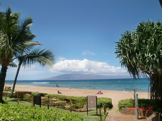 Westin Maui Resort And Spa: カアナパリビーチ