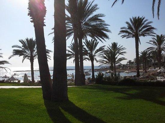 Constantinou Bros Pioneer Beach Hotel: Stunning gardens