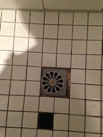 Romantik Hotel Landschloss Fasanerie : unschöner Badezimmerboden mit leichten Schimmelflecken