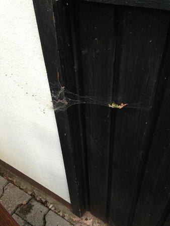 Romantik Hotel Landschloss Fasanerie : Spinnweben auf der Terrasse