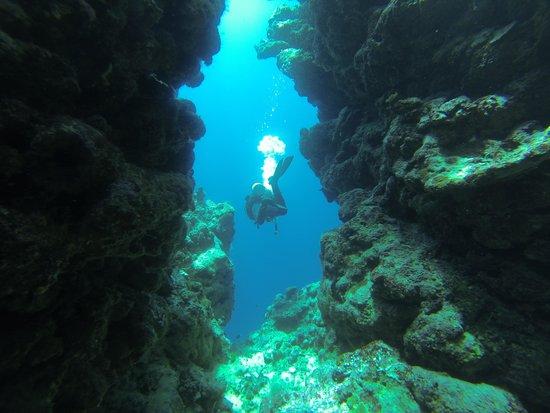 Uepi Island Resort : General Store swim through