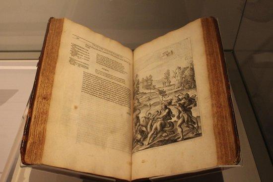 Shakespeare's Birthplace: The original folios