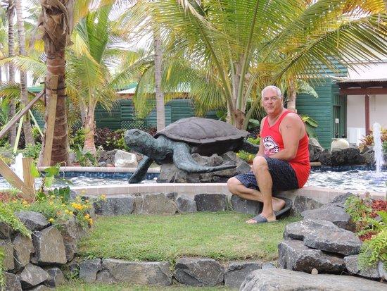 Coconut Bay Beach Resort & Spa: STill here