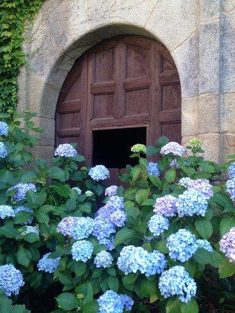Pazo de Bentraces: garden view