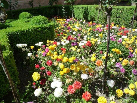 Alhambra: 花2
