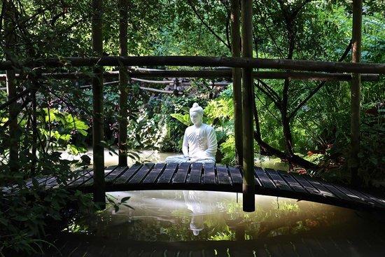 Heller Garden: Un dettaglio del giardino