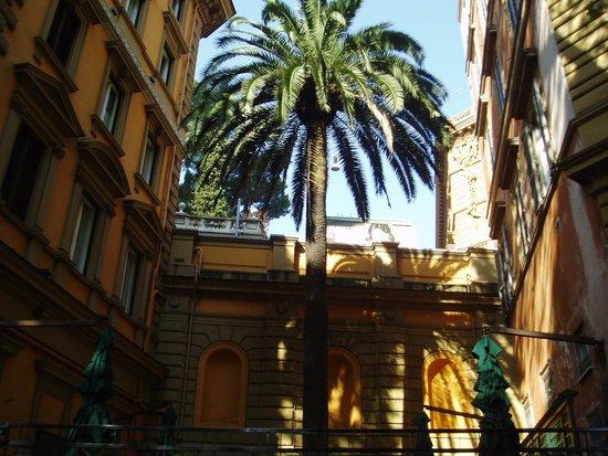 Hotel Savoy: ヴェネト通りのヤシの木