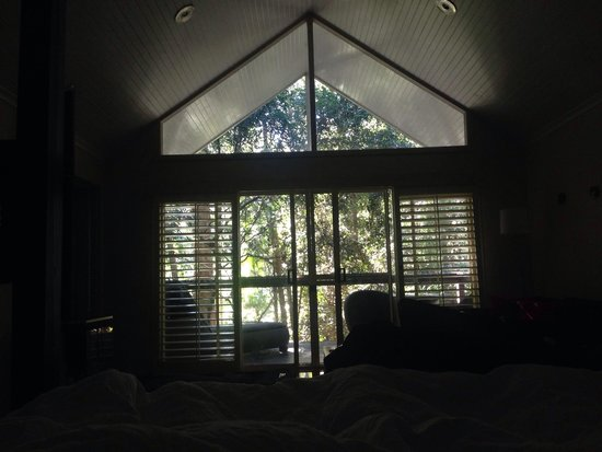 Songbirds Rainforest Retreat: View from villa 4 bed
