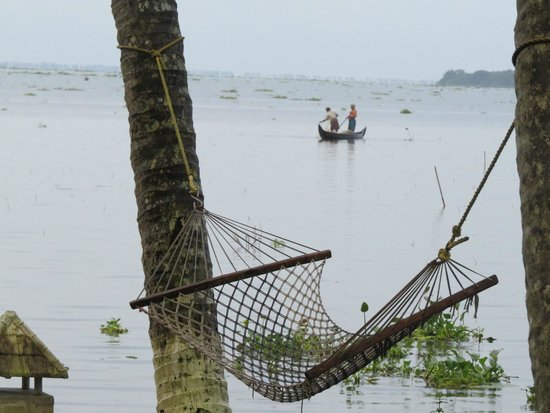 The World Backwaters: Way to relax