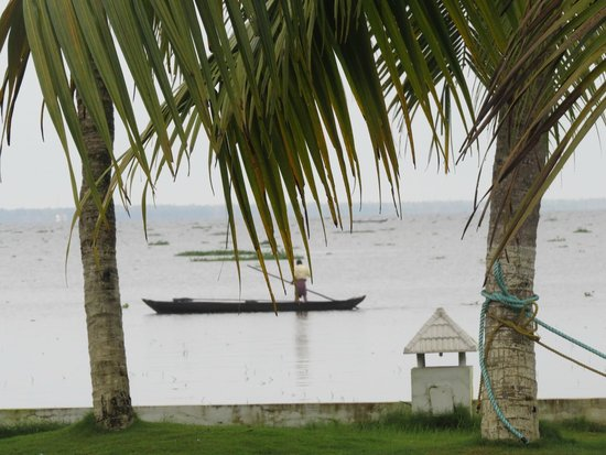 The World Backwaters: Mesmerising