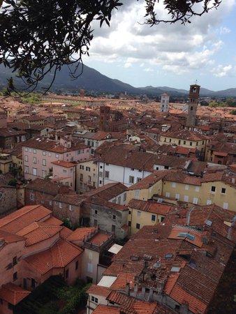 Guinigi Tower: I tetti di Lucca