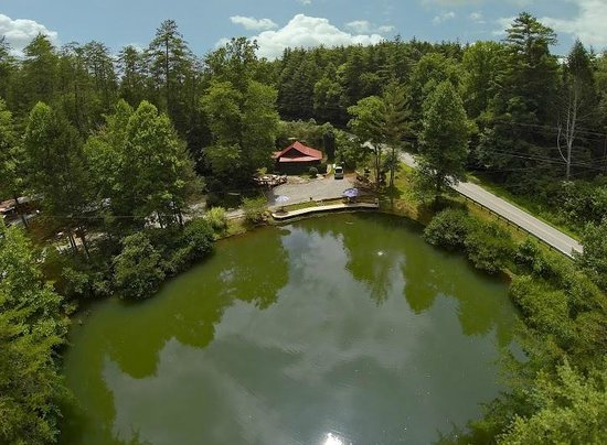 The Lilly Pad Village: Little oasis in the mountains