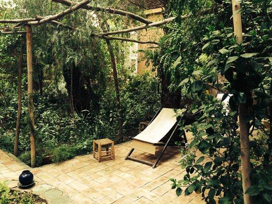 Villa Zagora Ma Villa au Sahara: More of the garden