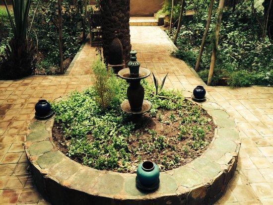 Villa Zagora Ma Villa au Sahara: More green!