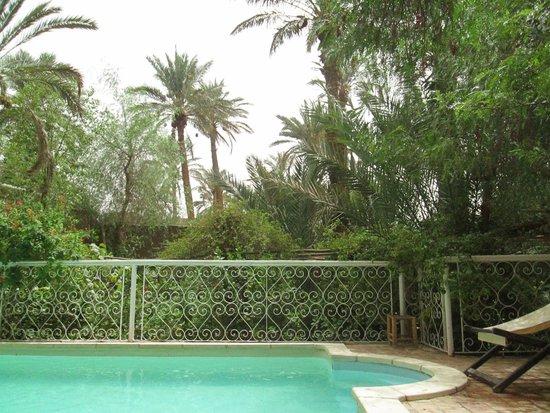 Villa Zagora Ma Villa au Sahara: The pool