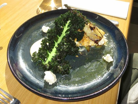 The Stunned Mullet: Blue Eye Trevalla with Crispy Kale, Cauliflower Puree and other flavours