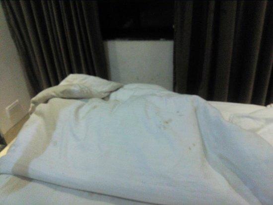 Hotel Sheetal: fungus