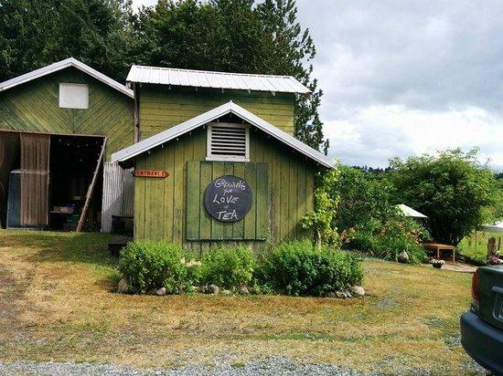 TeaFarm: The location!