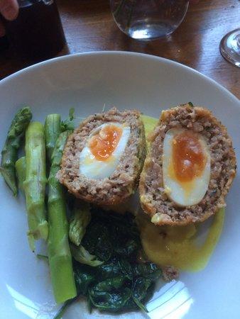 The Blackburne Pub & Eatery : Scotch eggs Devine .... Big portion