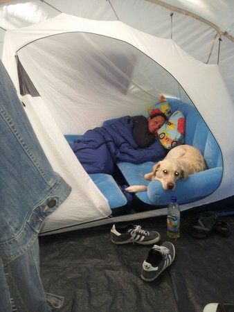 Welsummer Camping: August 2014