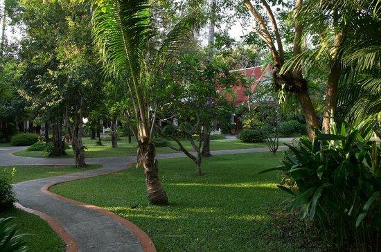 Santhiya Tree Koh Chang Resort : Hotelanlage von unserer Terrasse aus gesehen