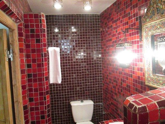 Riad Malaika: The bathroom in the room
