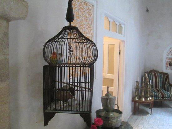 Riad Malaika: Enterance