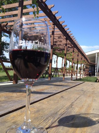 Pelee Island Winery : Yummy Red at the Picnic tables