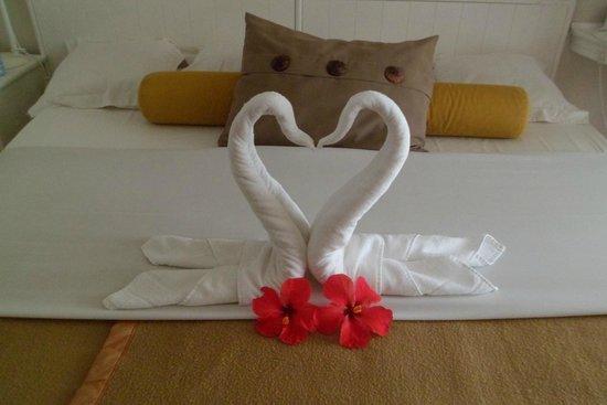 Tropical Attitude: Bed