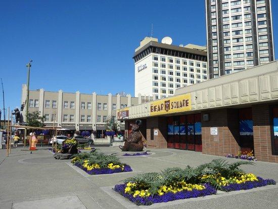 The Hotel Captain Cook: Umgebung