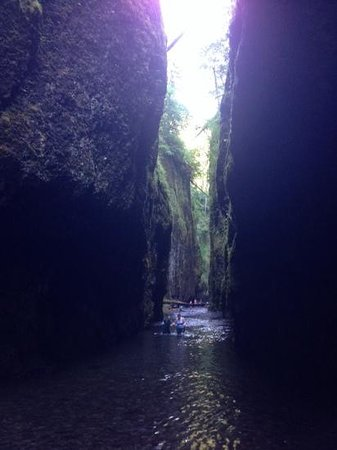 Oneonta Gorge: Tra le rocce