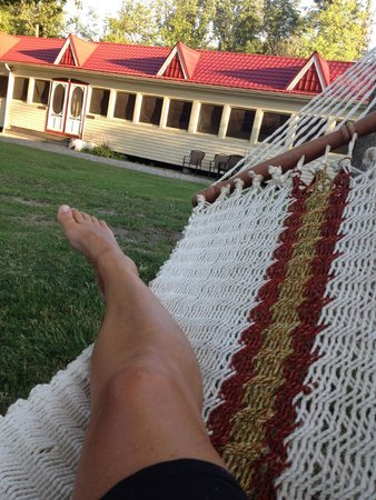 Explore Pelee: View from hammock at Wandering Phesant Inn