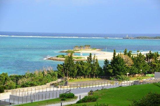 Okinawa Churaumi Aquarium: 庭園からの眺め