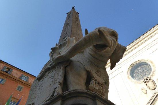 Santa Maria Sopra Minerva: Elephant