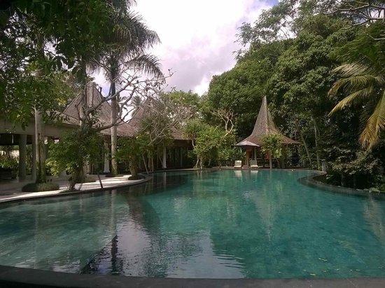 Pandawas Villas: Spectacular pool!