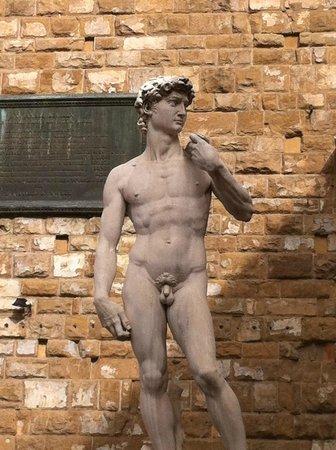 Tuscan Tour Guide - Tours: The David