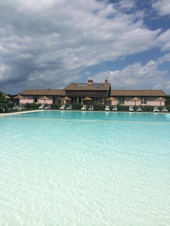 Fattoria Palazzetta: La splendida piscina