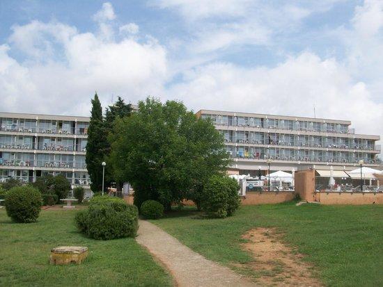Holiday Hotel: l'hotel visto dal giardino dalla parte del mare