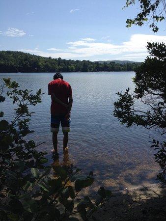 Follansbee Inn : The whole lake is my pool
