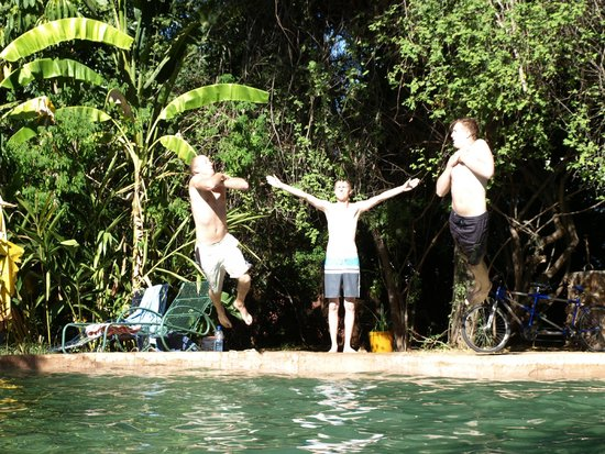 Victoria Falls Backpackers: Fun at the pool