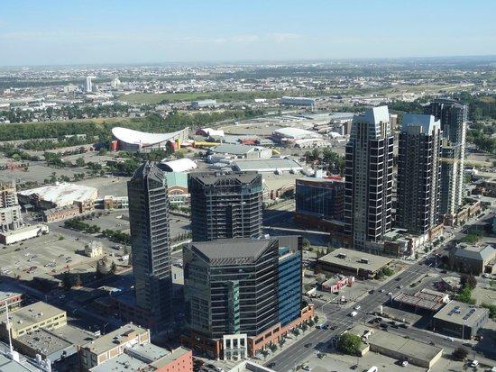 Hyatt Regency Calgary: Umgebung des Hotels