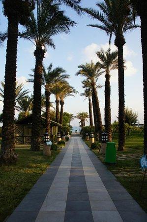 chemin de la piscine vers la plage