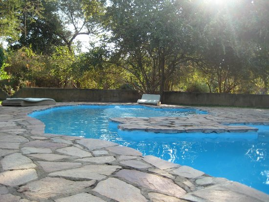 Thornicroft Lodge : Zambian Swimming Pool!