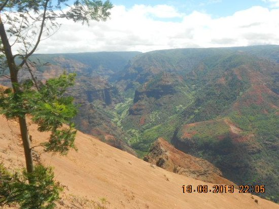 Waimea Canyon : Red, red, red dust! Reminds me of Australia!