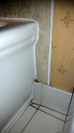 Omni Parker House : Mold