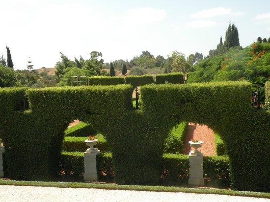 Bahai Gardens  and Shrine: Один из видов в бахайсских садах
