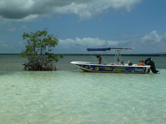 Blue Lagoon Excursion : Idem