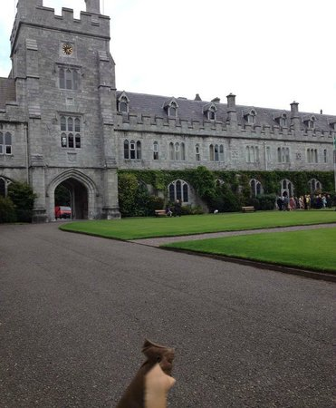 University College Cork (UCC): west wing